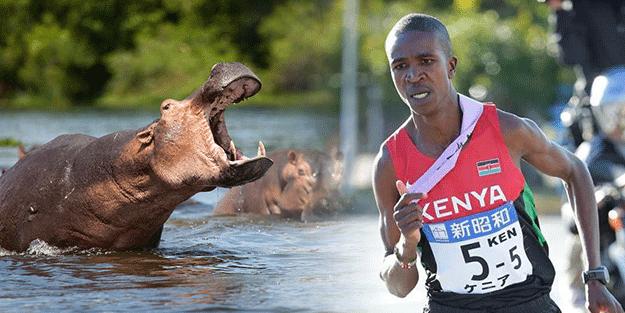 Türkiye'ye gelmek için saatler sayan Kenyalı atlete su aygırı saldırdı