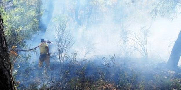 Türkiye'yi sarsan yangınlarda büyük şüphe!