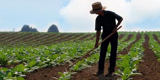 TZOB'dan 'genç çiftçiye', son gün uyarısı!