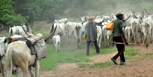 Ülke şokta... Çobanlar ve çiftçiler arasında çatışma çıktı! 16 kişi öldü