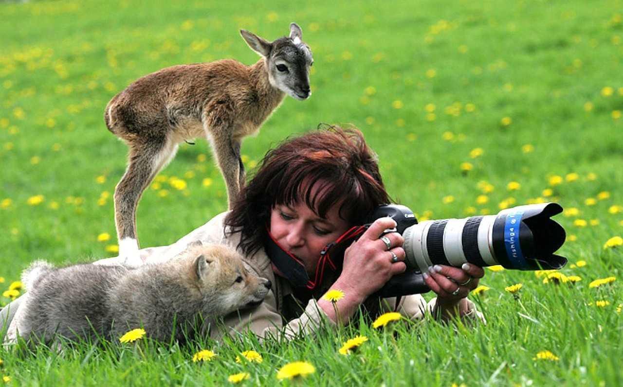 Vahşi doğanın en komik fotoğrafları! Bakan bir daha bakıyor