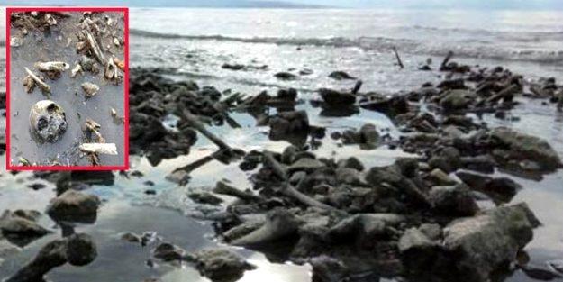Van Gölü'nde korkunç görüntü! Sular çekilince ortaya çıktı