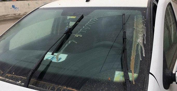 Van'da çamur yağdı