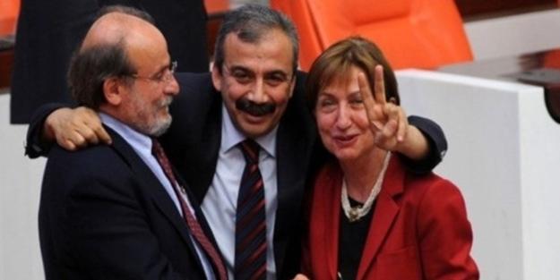 CHP milletvekili Binnaz Toprak: Benim tavsiyem HDP