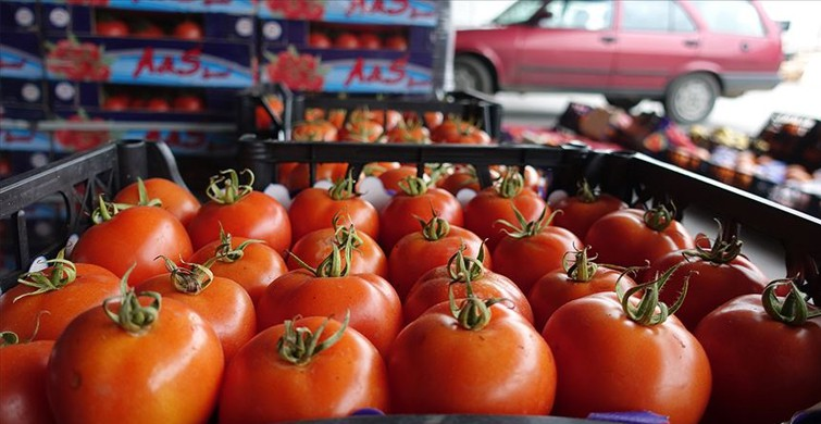 Yaş meyve sebze ihracatında lider Rusya oldu