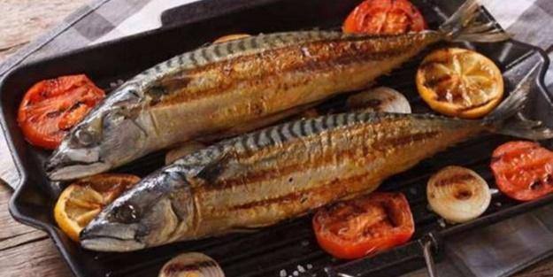 Yaşlanmayan beyin istiyorsanız bol balık tüketin