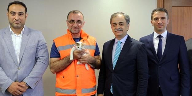 Yavru kediyi suni tenefüs yaparak kurtaran İBB personeli ödüllendirildi