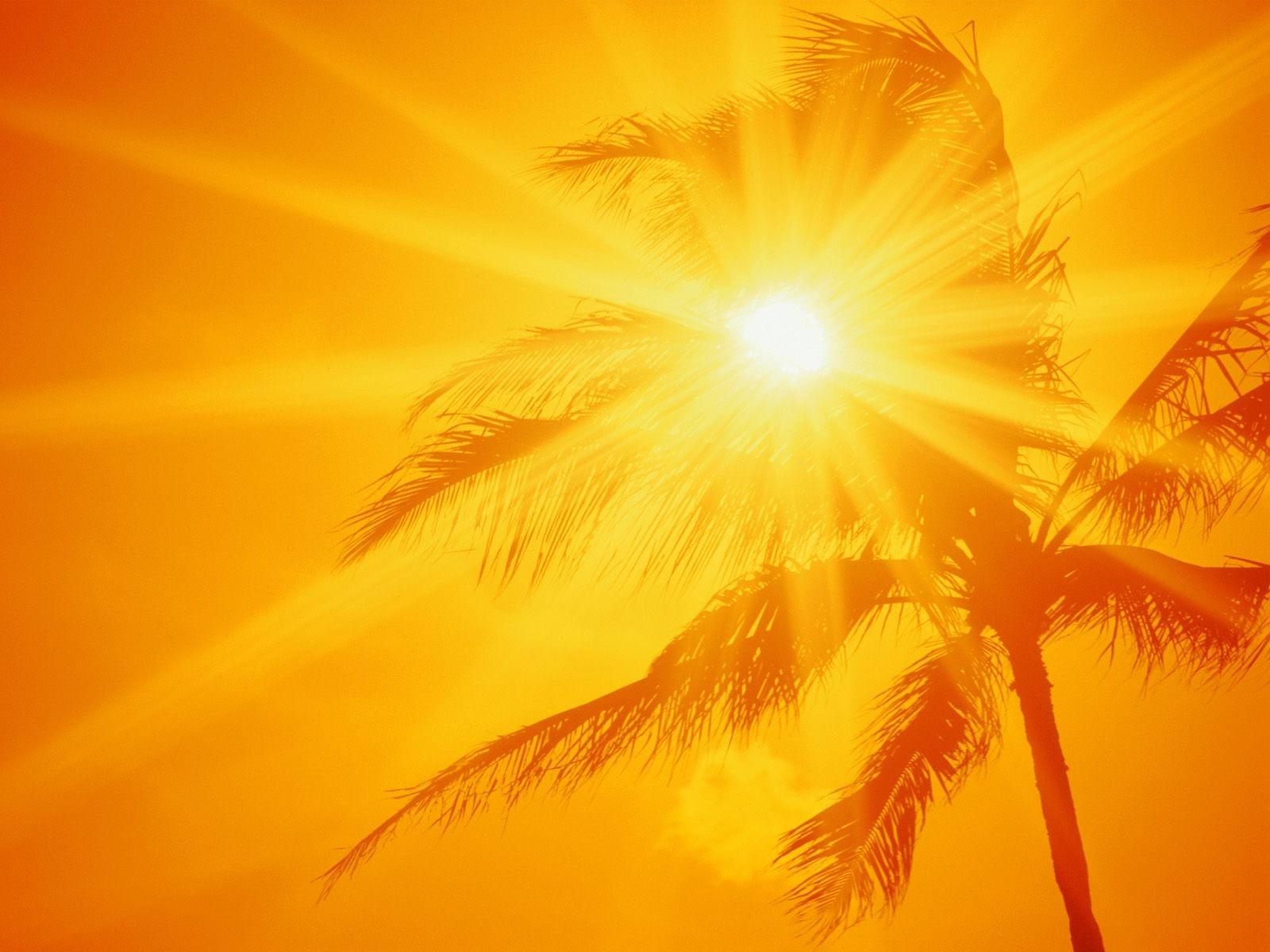 Yaz Sıcağından Korunma Yolları