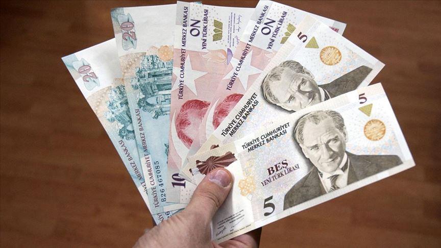 Yeni Türk Lirası banknotların zaman aşımı süresi yıl sonunda dolacak