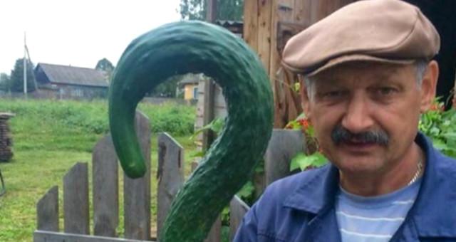 Yetiştirdiği hıyarla fotoğraf çektiren çiftçi, Reddit'in son kurbanı oldu