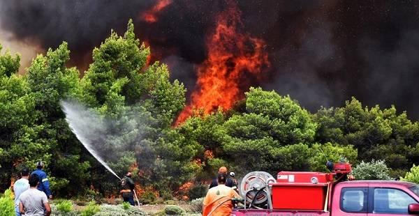 Yunanistan yangın son durum