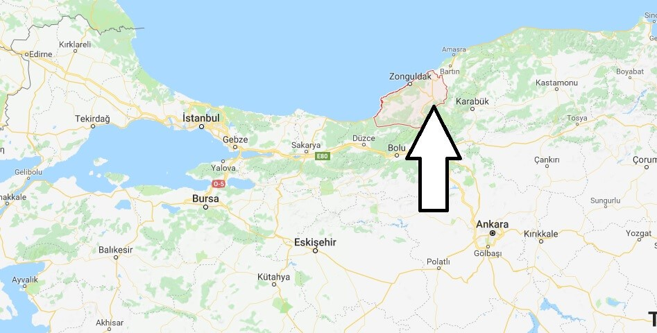 Zonguldak karantinaya mı alındı?