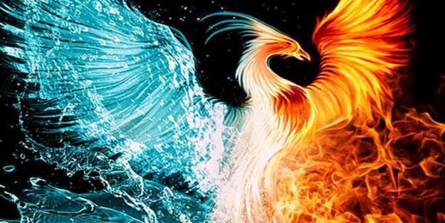 Zümrüdü Anka Kuşu nedir? Zümrüdü Anka Kuşu'nun özellikleri nedir?