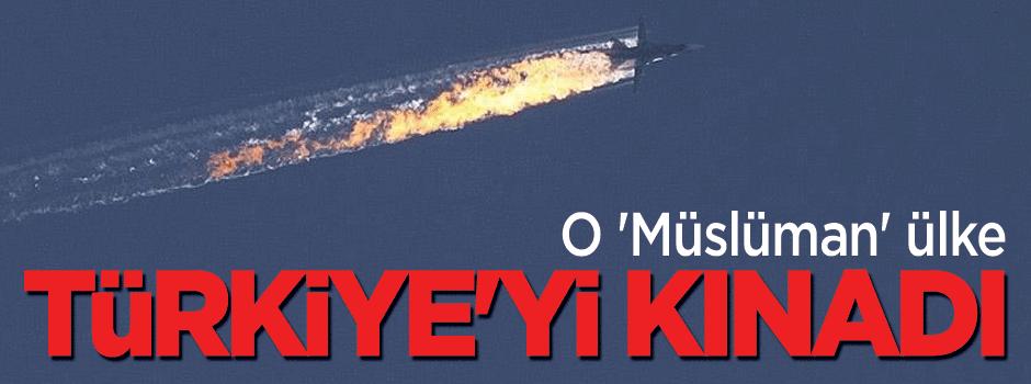 """Arap ülkesi """"Rus uçağın düşürülmesini"""" kınadı"""