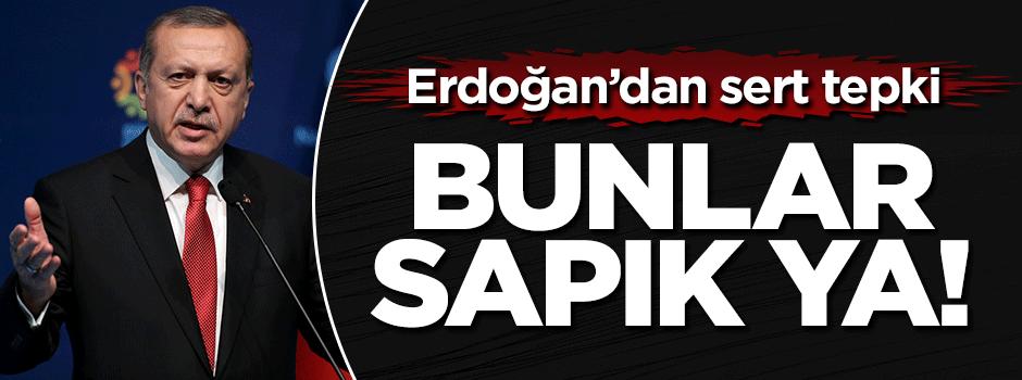 Erdoğan'dan sert tepki: Bunlar sapık ya!