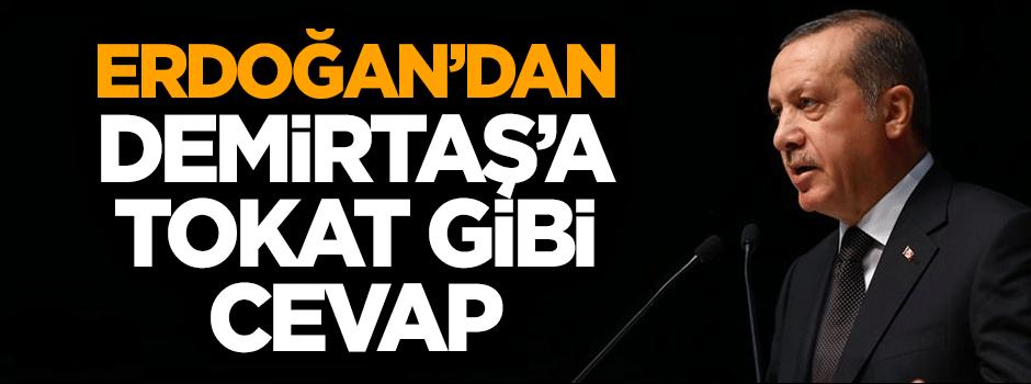 Erdoğan'dan Demirtaş'a tokat gibi cevap