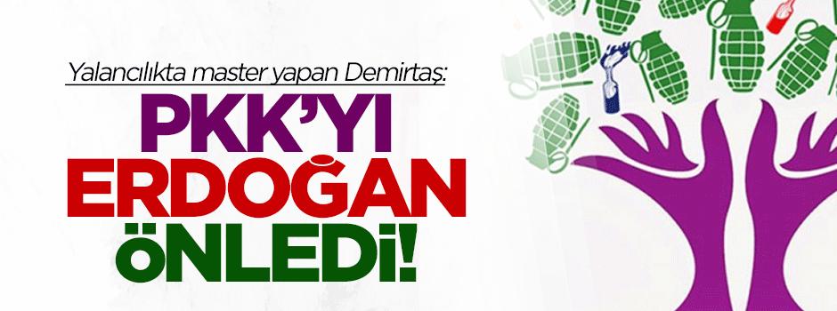 Demirtaş: PKK'yı Erdoğan engelledi