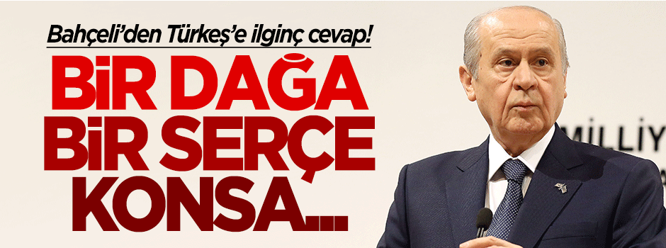 Devlet Bahçeli'den Tuğrul Türkeş'e ilginç cevap!