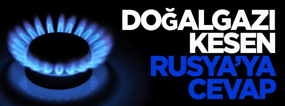 Doğalgazı kesen Rusya'ya cevap
