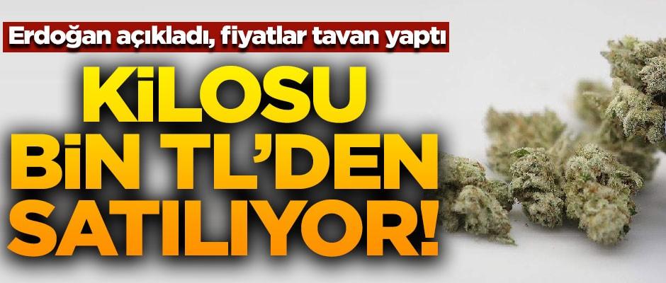 Erdoğan açıkladı, fiyatlar tavan yaptı! Kilosu bin TL'den satılıyor