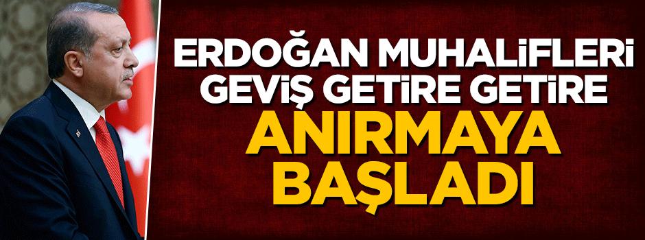 Erdoğan muhalifleri geviş getire getire anırmaya başladı!