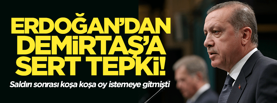 Erdoğan'dan Demirtaş'a sert tepki!