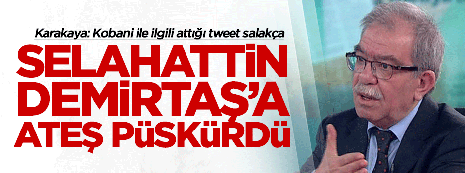 Hasan Karakaya'dan Selahattin Demirtaş'a sert cevap!