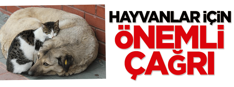 Hayvanlar için önemli çağrı