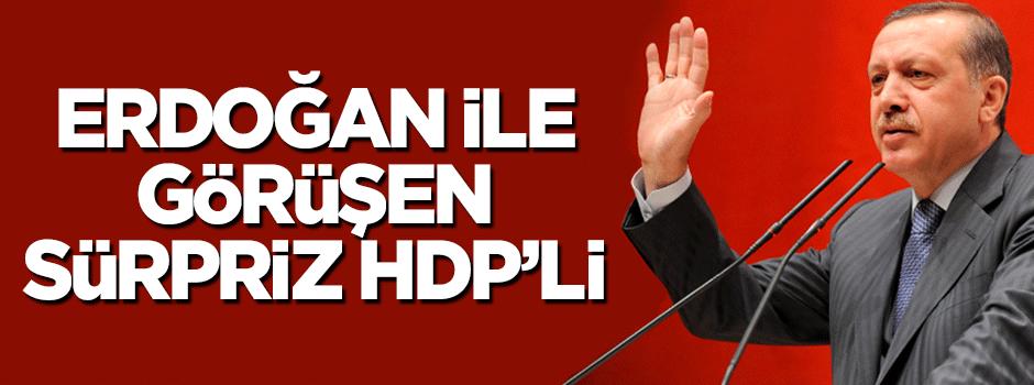 Erdoğan ile görüşen sürpriz HDP'li