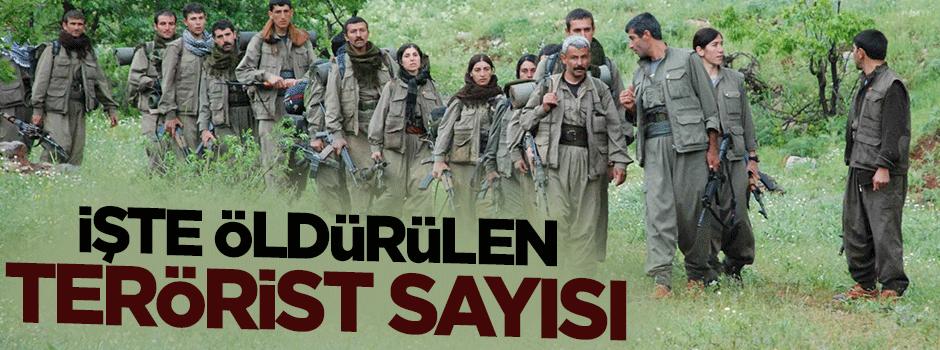 İşte öldürülen PKK'lı sayısı