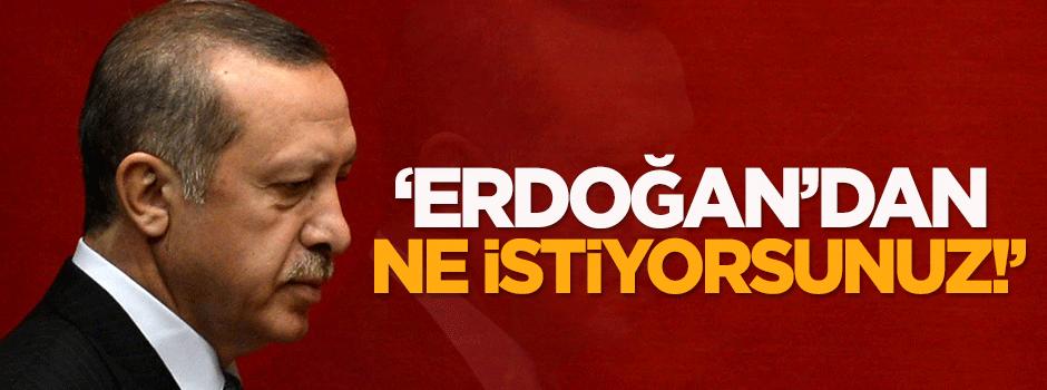 'Erdoğan'dan ne istiyorsunuz!'