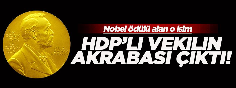 Nobel ödüllü Türk, HDP'li vekilin akrabası çıktı