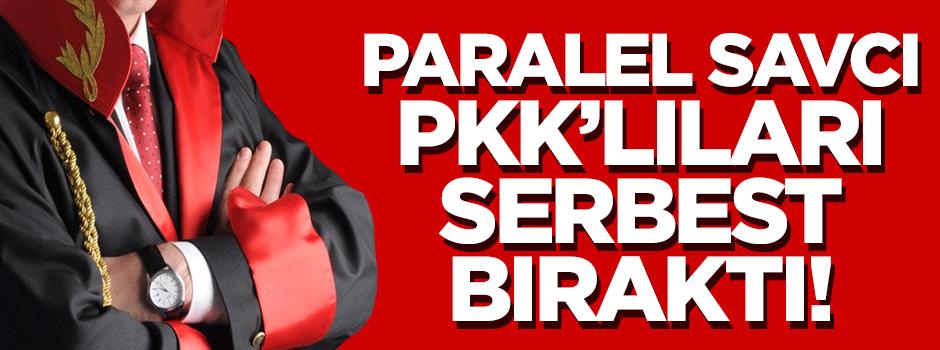 Paralel savcı PKK'lıları bıraktı!