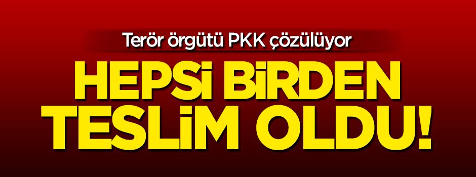 PKK çözülüyor: Hepsi birden teslim oldu!