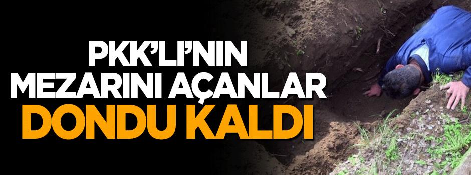 PKK'lı teröristin mezarını açanlar şaşkına döndü