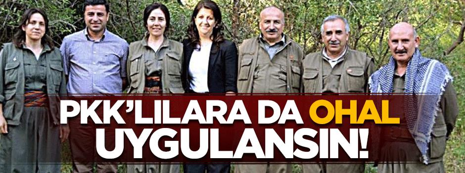 PKK'lılara da OHAL uygulansın