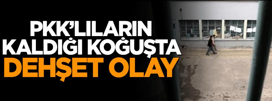 PKK'lıların kaldığı koğuşta dehşet olay