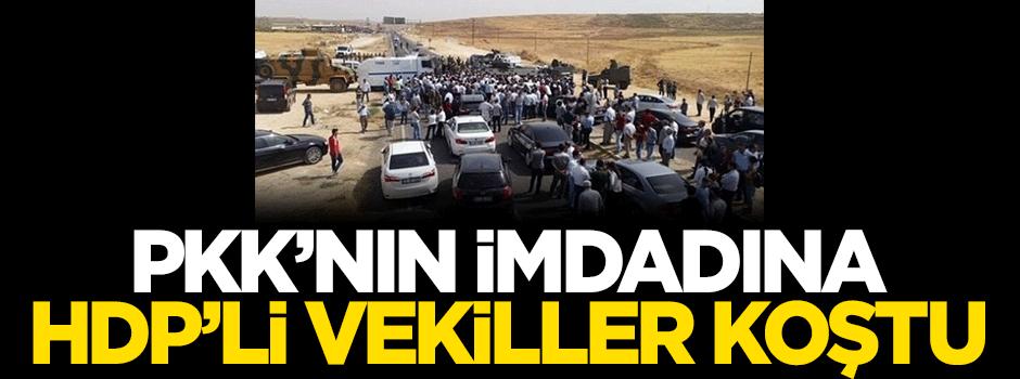 PKK'nın imdadına HDP'li vekiller koştu