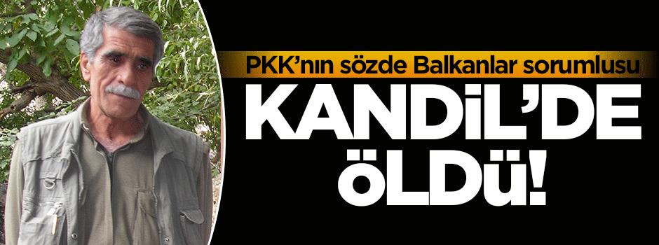 PKK'nın sorumlusu Kandil'de öldü