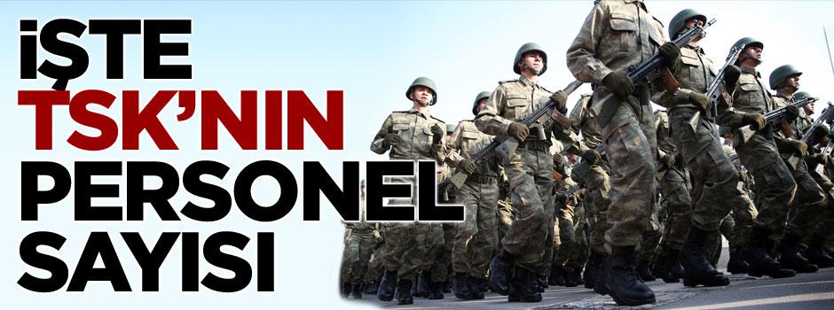 TSK'da kaç asker, kaç rütbeli var?