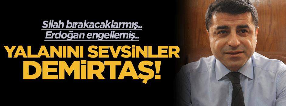 YALANINI SEVSİNLER DEMİRTAŞ!