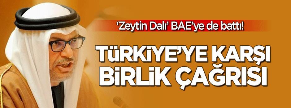 'Zeytin Dalı' BAE'ye battı, bakanı öttü
