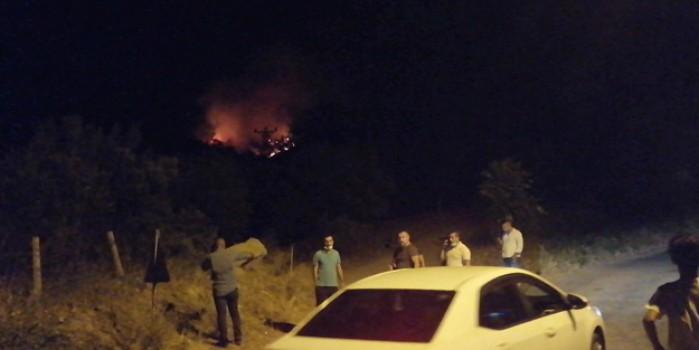 Bir ilimizde daha orman yangını başladı!