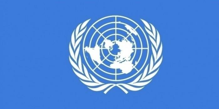 BM Güvenlik Konseyi'nden küresel çapta 90 gün ateşkes kararı
