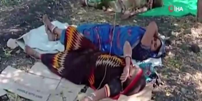 Hindistan'da şok eden manzara! Korona hastaları portakal bahçelerinde tedavi görüyor