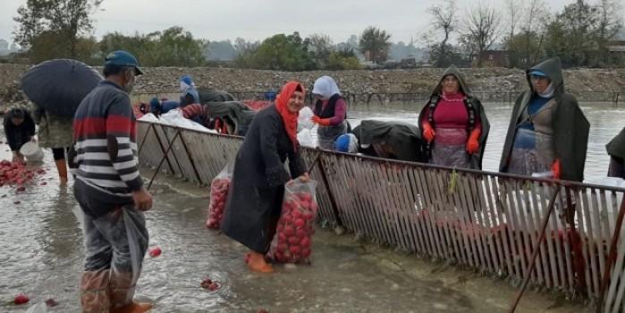 Kadınların soğuk suda ekmek mücadelesi