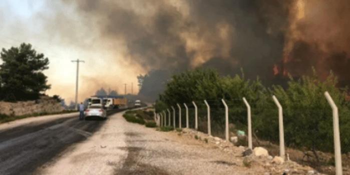 Manavgat'taki orman yangınında yeni görüntüler