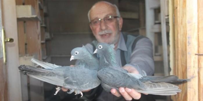 O, güvercin babası! 50 yıldır 'evladım' dediği güvercinlerine bakıyor