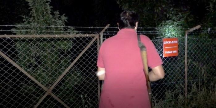Sabaha kadar tüfekle ve sopayla avokado nöbeti tutuyorlar