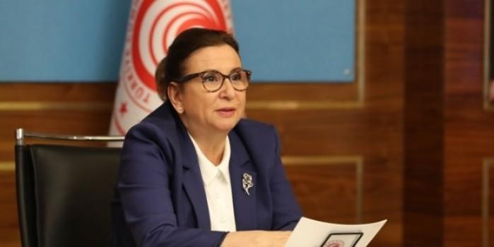 Ticaret Bakanı Pekcan'dan e-ticaret açıklaması